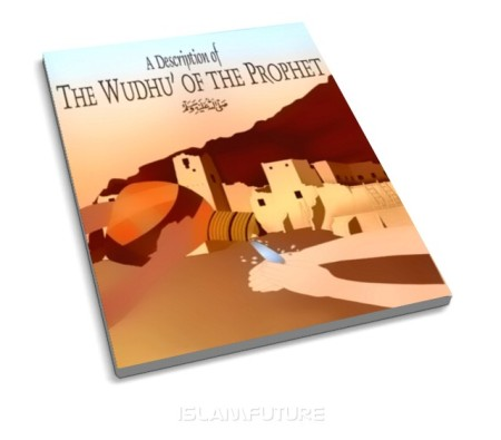 http://islamfuture.files.wordpress.com/2010/06/a-description-of-the-wudhu-of-the-prophet-pbuh.jpg?w=450&h=395
