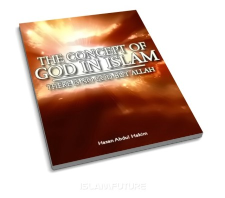 http://islamfuture.files.wordpress.com/2010/06/the-concept-of-god-in-islam.jpg?w=450&h=396