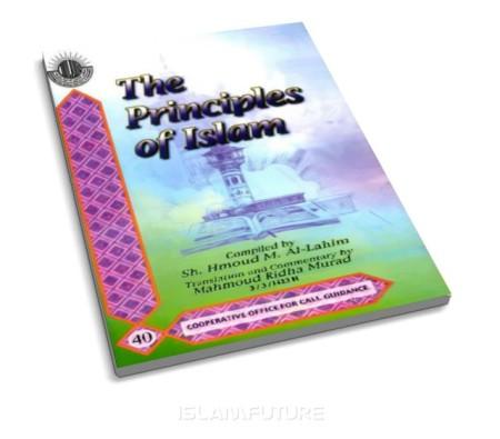 https://islamfuture.files.wordpress.com/2010/06/the-principles-of-islam.jpg