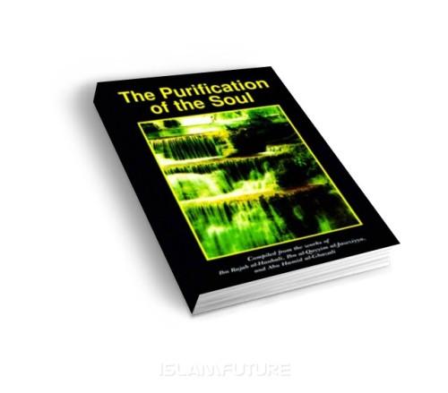 https://islamfuture.files.wordpress.com/2010/06/the-purification-of-the-soul.jpg