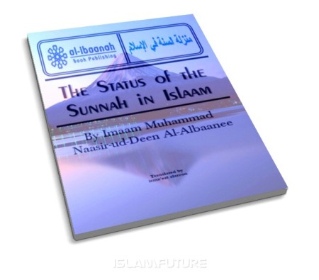 https://islamfuture.files.wordpress.com/2010/06/the-status-of-the-sunnah-in-islaam.jpg