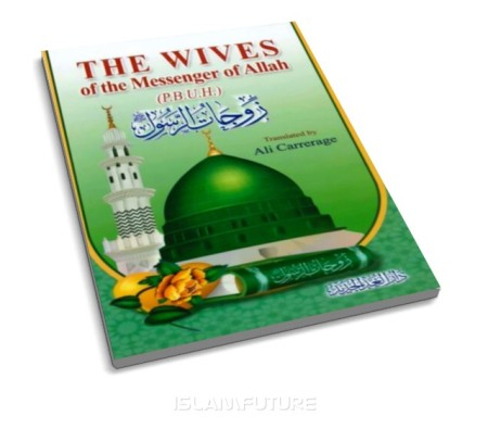 http://islamfuture.files.wordpress.com/2010/06/the-wives-of-the-messenger-of-allah-pbuh.jpg?w=450&h=395