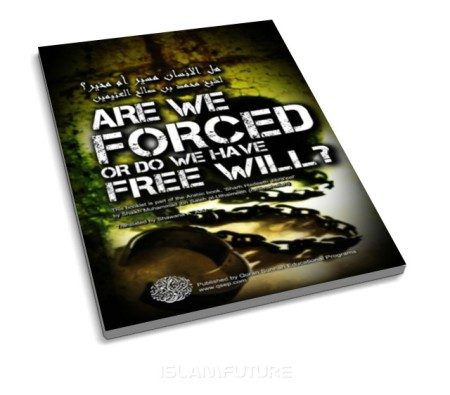 http://islamfuture.files.wordpress.com/2011/07/are-we-forced-or-do-we-have-free-will.jpg?w=450&h=395